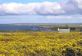 Far North Cottage Dunnet Head | Remote detached Cottage sleeps 6, Stove, Jacuzzi bath, En Suite, Sauna, Conservatory, Best place to see the Northern Lights