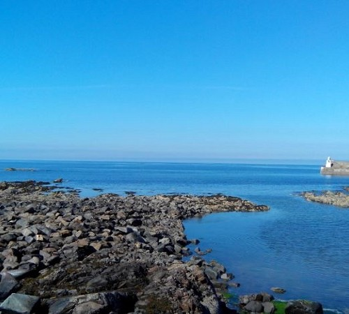 Moray Cottages: Shore Cottage Moray Firth