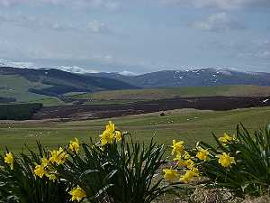 Holiday Cottages Cairngorms Loch Ness East Coast